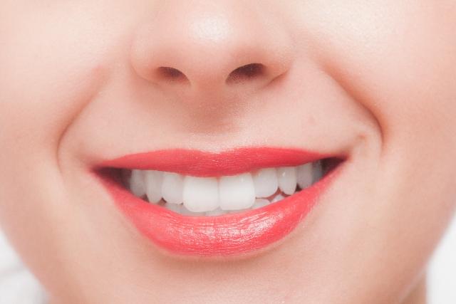 綺麗な歯のモデル